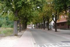 Tuinwijk-Eisden-228-Laan-naar-Barbarakerk