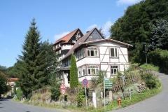 Harz-Altenbrak-042-Hohlweg