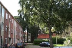 Alkmaar-397-Wibautstraat