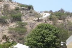 St.-Maarten-1319-Een-van-de-wegen