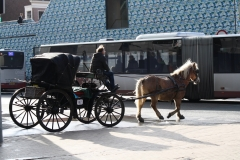Groningen-054-Paard-en-wagen
