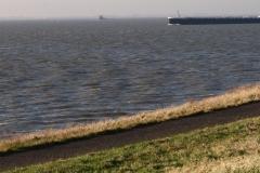 Haven-bij-de-Schelde-019-Voorbijvarende-schepen-en-boei