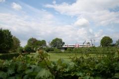 Voerendaal-054-Trein-op-spoorweg-achter-Kasteel-Haeren