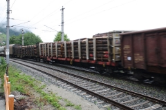 Zell-am-See-072-Spoorbaan-met-goederentrein